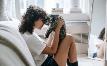 kot i właściciel